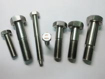 Custom stainless steel hex bolt