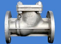 PN16 Flanged Stainless Steel Swing Check Valve