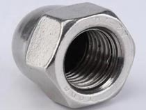 Stainless Steel DIN1587 Hex Dome Cap Nuts